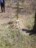 Установка памятника на могилу - фото 01